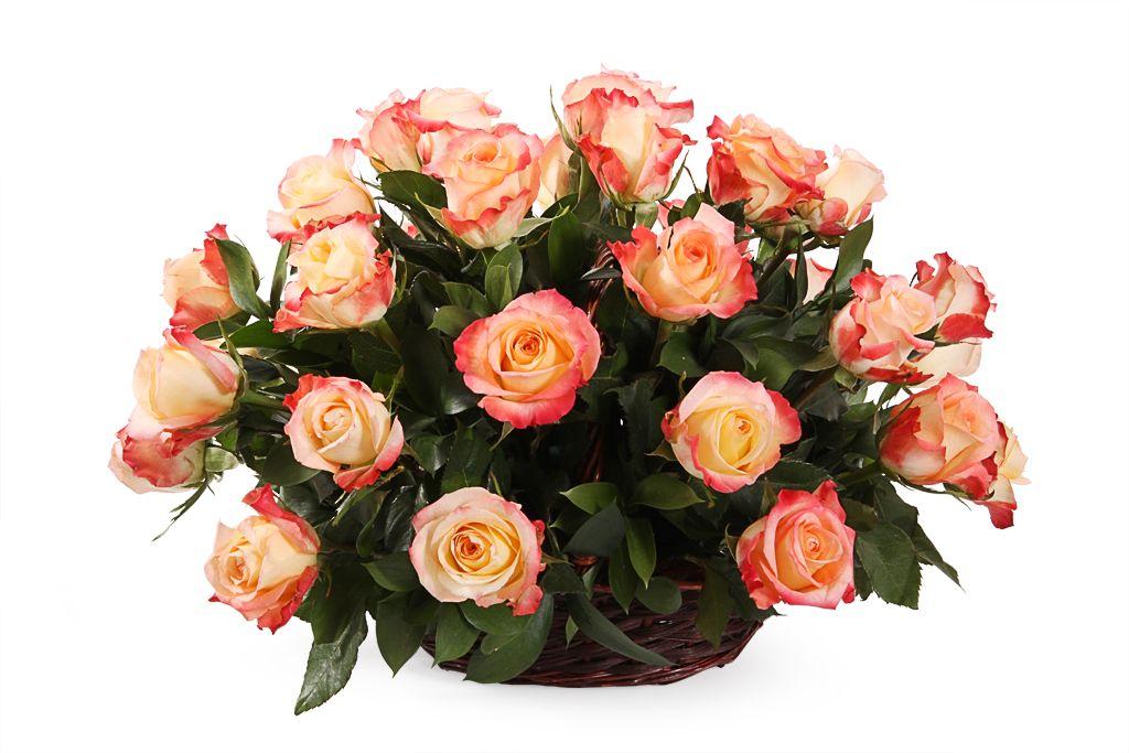 Букет 35 роз Кабаре в корзине фото
