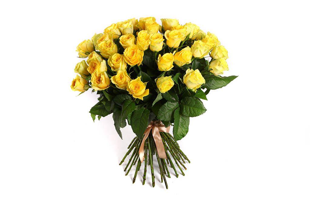 Букет 51 роза Илиос фото