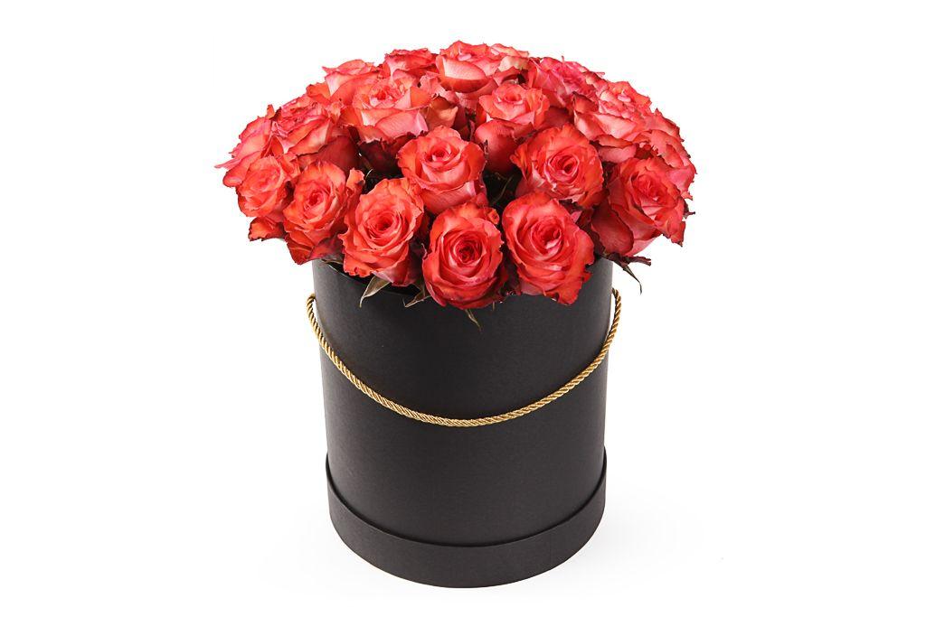 Букет 25 роз Игуана в шляпной коробке фото