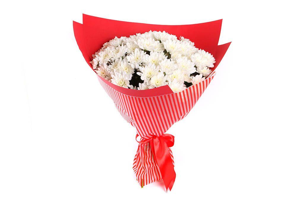 Букет 15 белых кустовых хризантем в красной бумаге фото