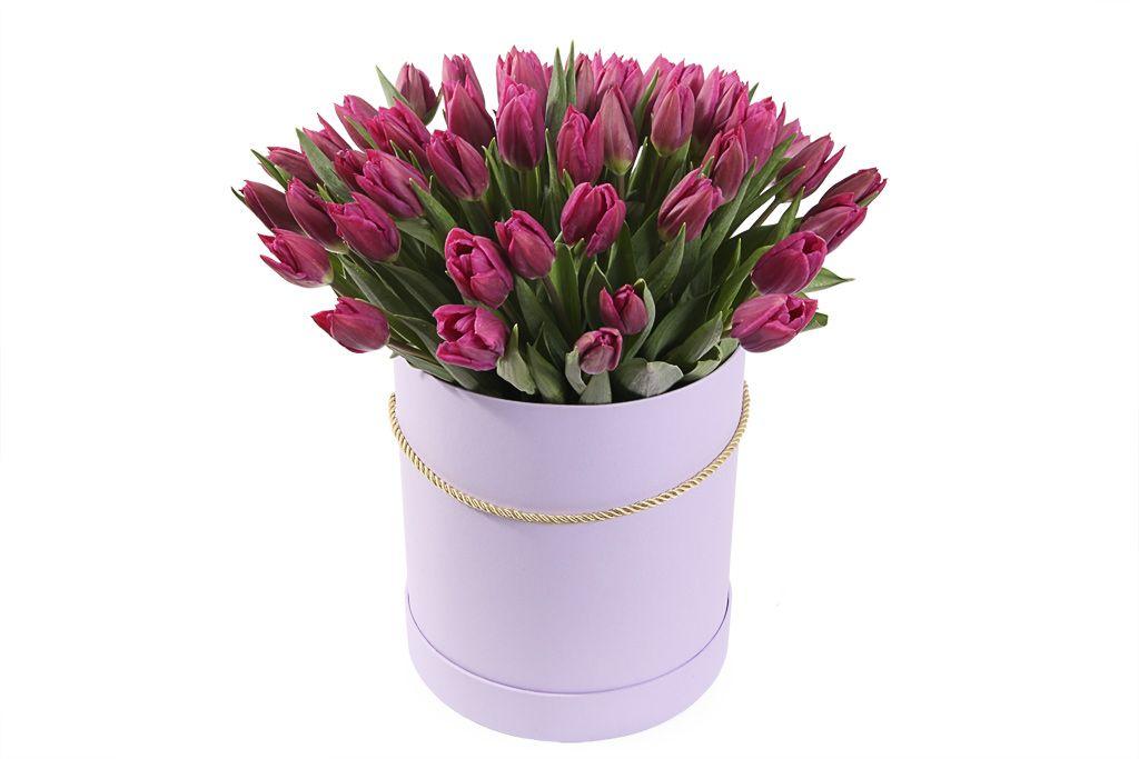 Букет 51 королевский тюльпан в лиловой коробке, пурпурные фото