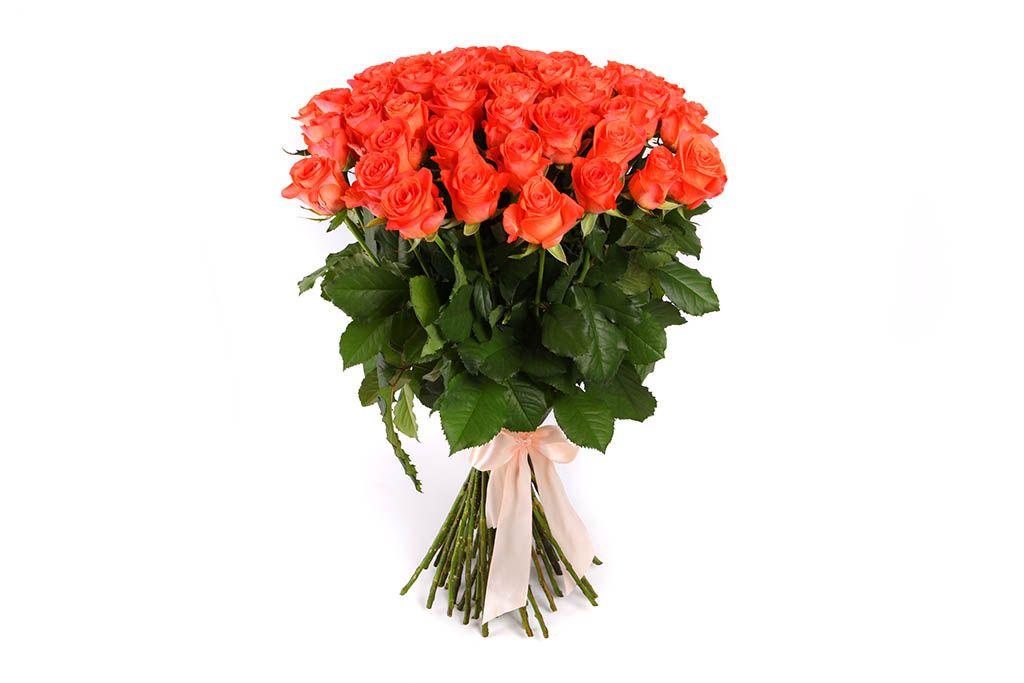 Букет 51 роза Вау фото