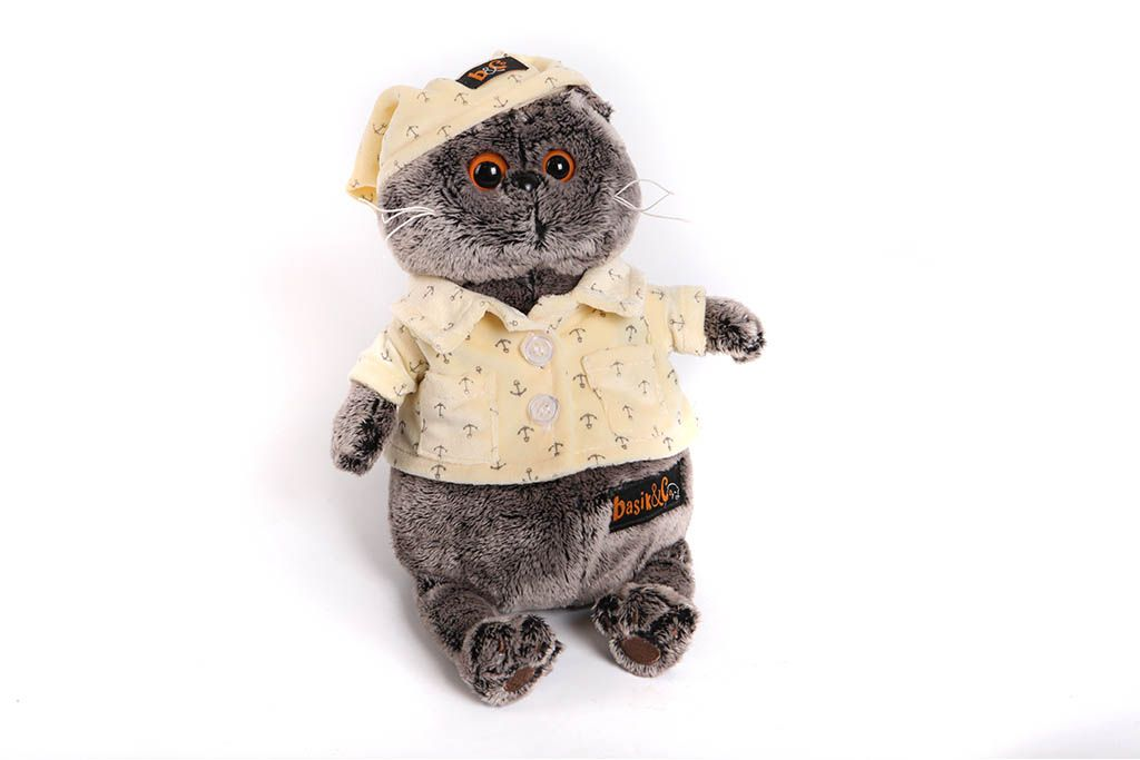 Кот Басик в пижаме фото