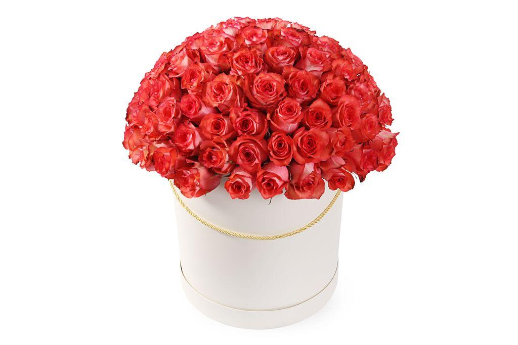 Букет 101 роза Игуана в шляпной коробке фото