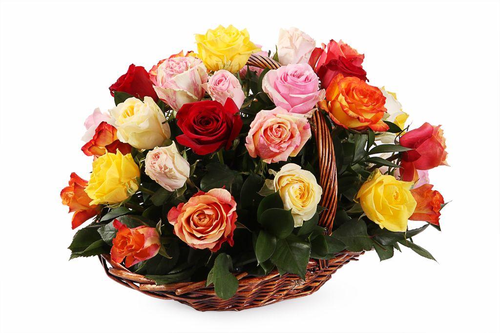 Букет Фламандская легенда (35 роз) в корзине фото