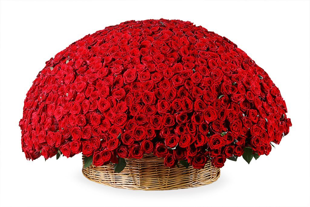 Букет 1001 роза в корзине фото