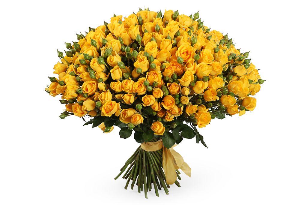 Букет 51 кустовая роза Мариса фото