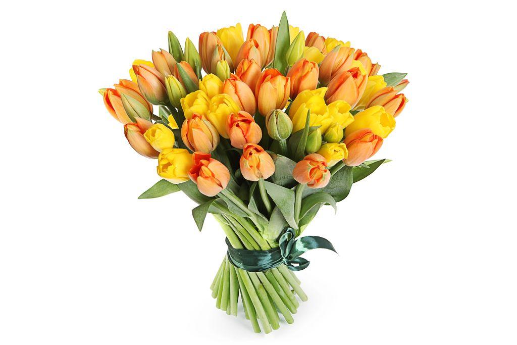 Букет 51 тюльпан, цитрусовый микс фото