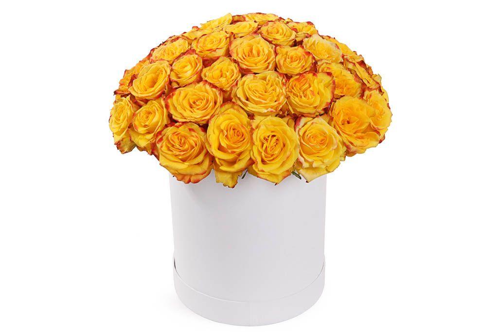 Букет 51 роза Хай Еллоу в белой шляпной коробке фото