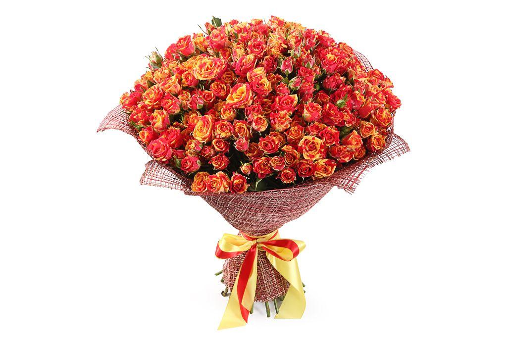 Букет 50 кустовых роз Фаер Флеш фото
