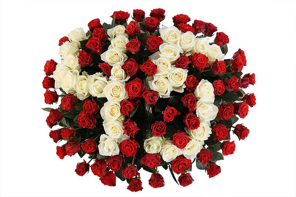 Букет Счастливое число из 101 розы в корзине фото