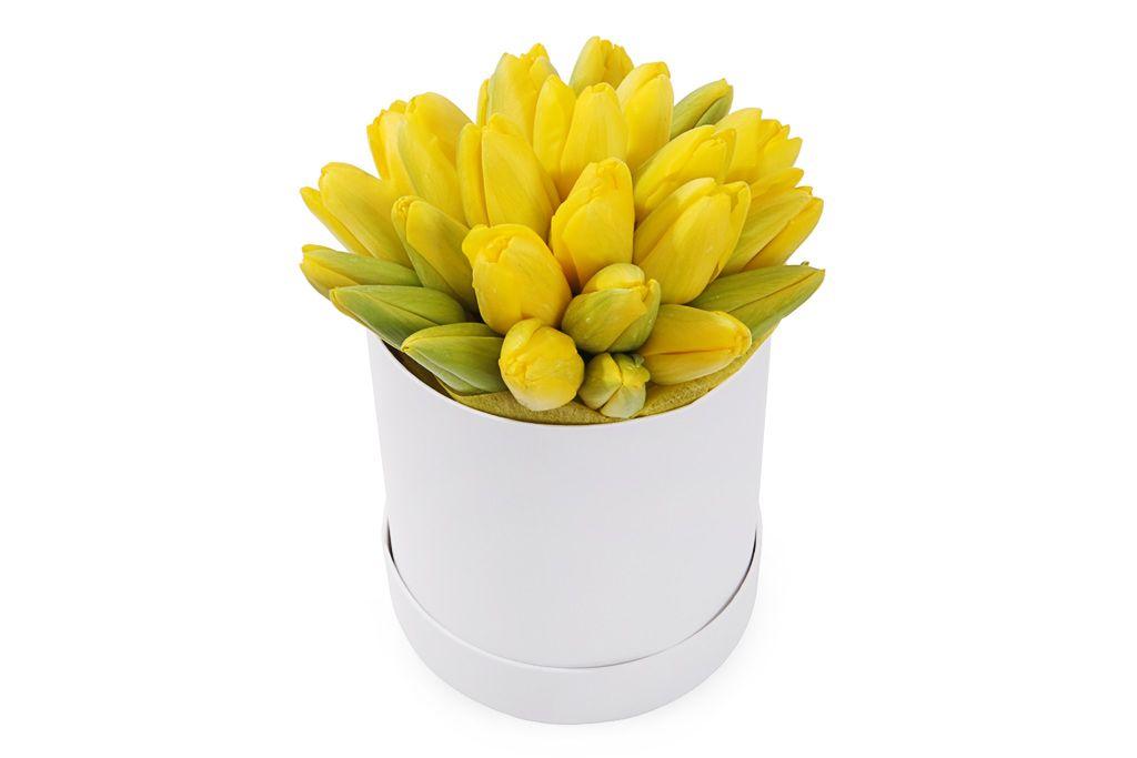 Букет 25 королевских тюльпанов в белой коробке, желтые фото