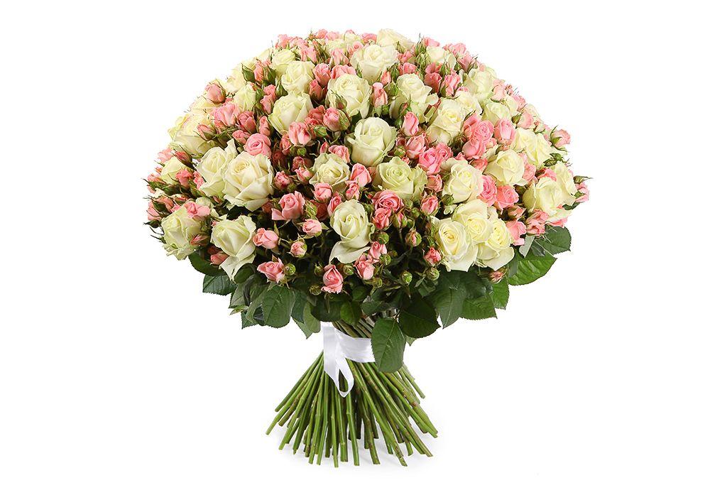 Букет Романтический вечер, 101 роза фото