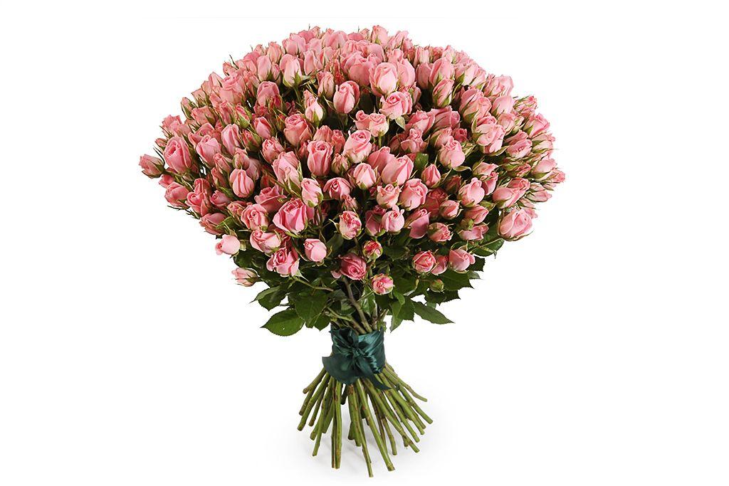 Букет 35 кустовых роз Одилия фото