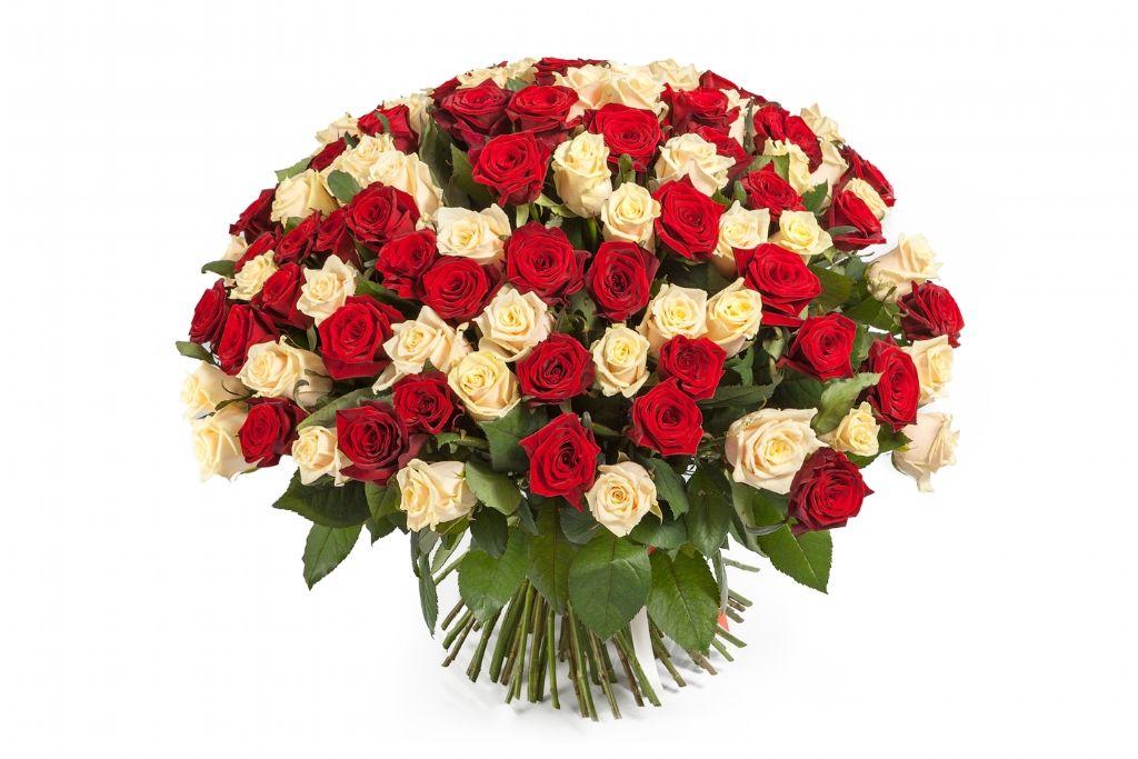 Букет 101 роза микс фото