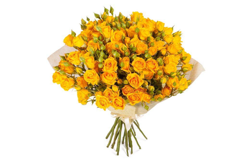 Букет 15 кустовых роз Еллоу фото
