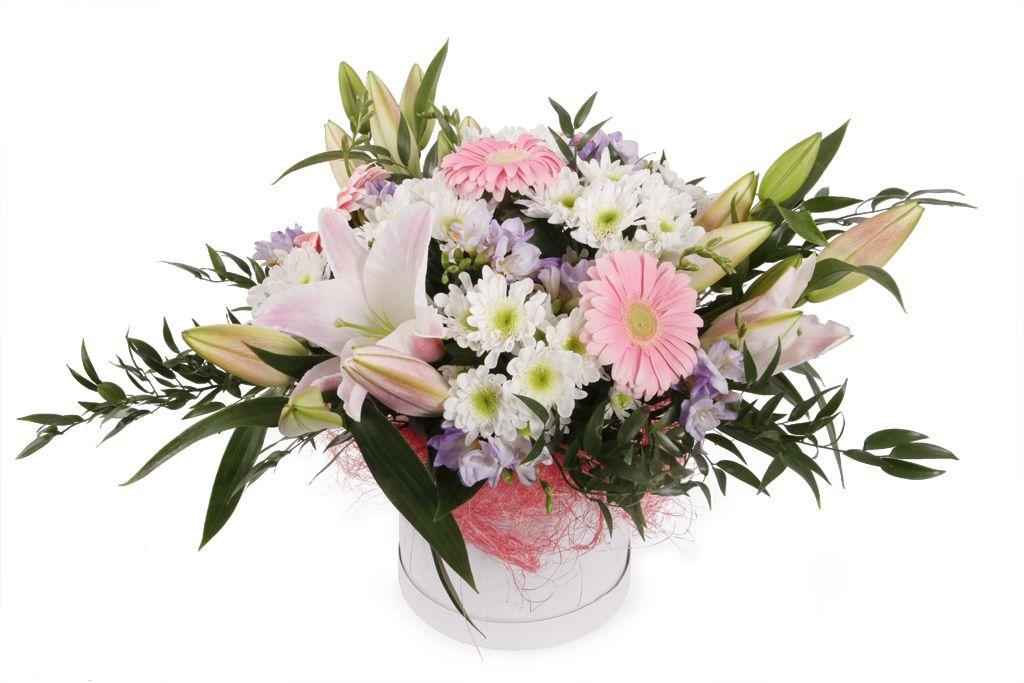 Букет Милагрос в шляпной коробке (лилии, герберы, фрезии) фото