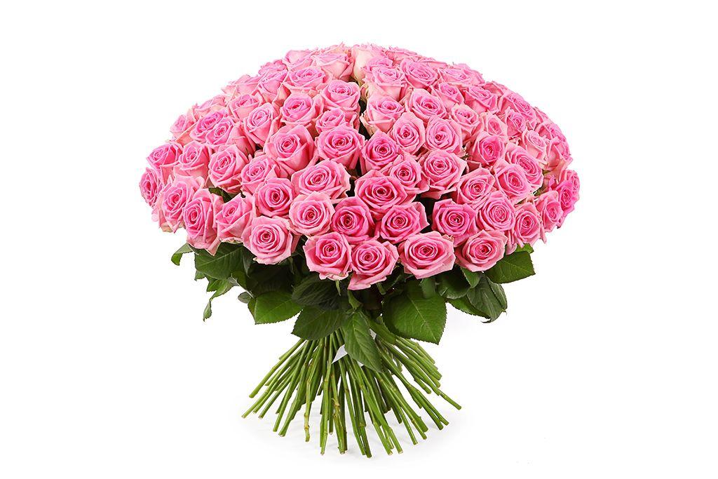 Букет 101 роза Аква фото