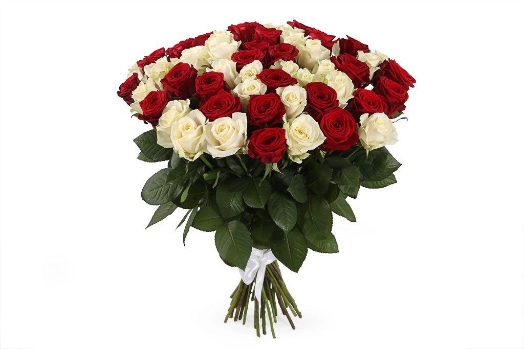 Букет 51 роза красно-белый микс фото
